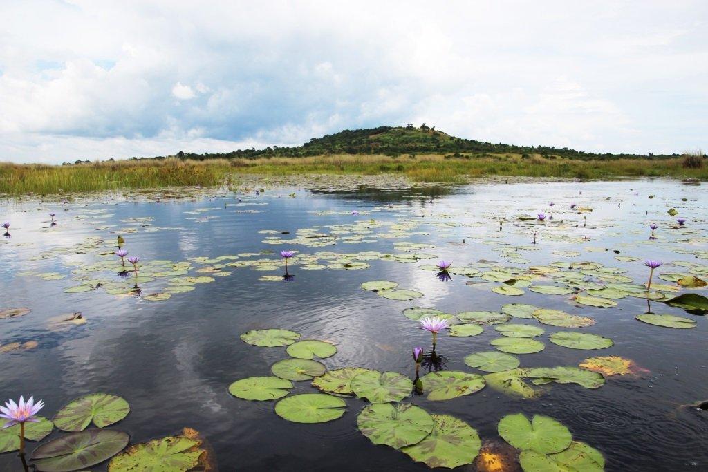 road ugan river