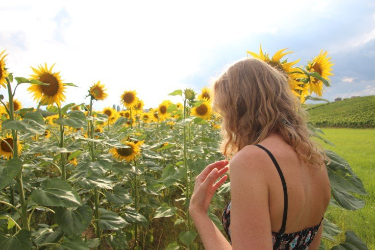 The sunflower field close to Geneva, made me really happy!