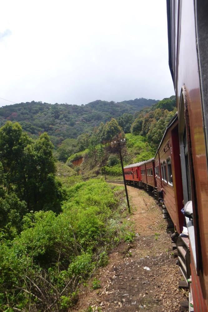 View from the train from Haputale to Nuware Eliya
